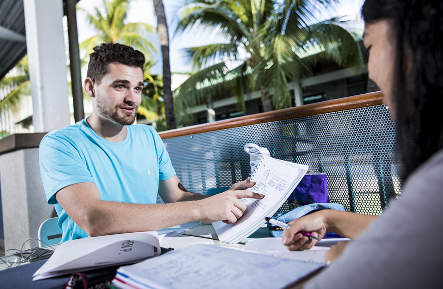 2 Students studying together on the lanai, with palm trees in the background,